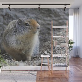 Ground Squirrel Wall Mural