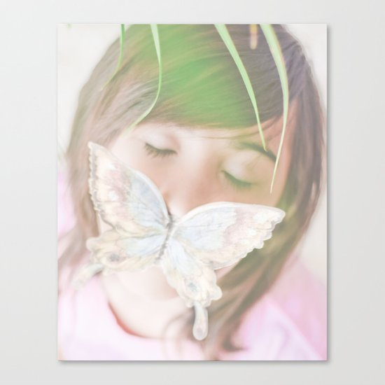 Butterfly love Canvas Print