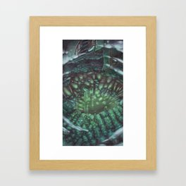 Quite the View Framed Art Print