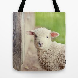 Little Lamb I Tote Bag