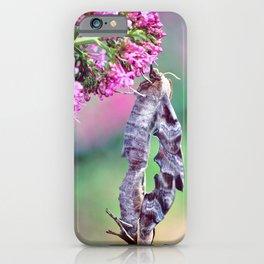 Macro of two Poplar Hawk-Moth butterflies copulating on valerian flower iPhone Case