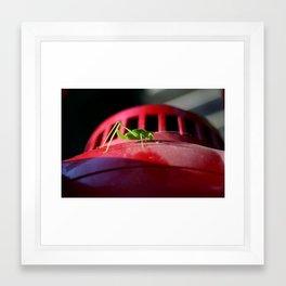 Alien on the saucer Framed Art Print