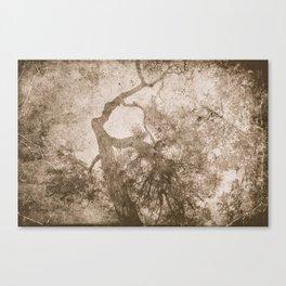 Vintage delicate tree pattern Canvas Print