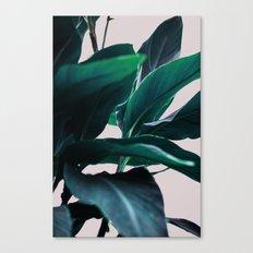 Leaves 4 Canvas Print