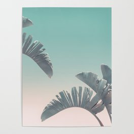 Tropical Palm Leaves In Pastel Light Poster