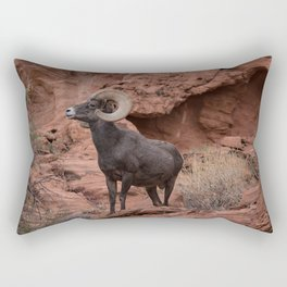 Desert Bighorn, Valley of Fire - III Rectangular Pillow