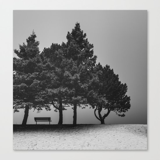 Shelter from the Storm Canvas Print