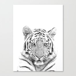 Black and white tiger Canvas Print