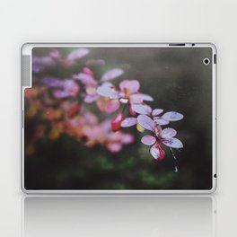 Thorns Laptop & iPad Skin