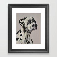 Dalmation Framed Art Print