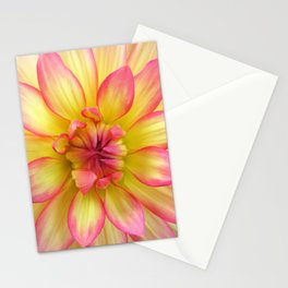Pink and Yellow Dahlia Flower / Nature Macro Photography Stationery Cards
