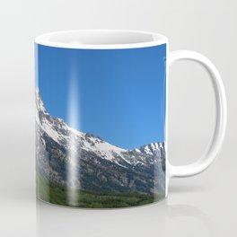 Fascinating Nature Coffee Mug