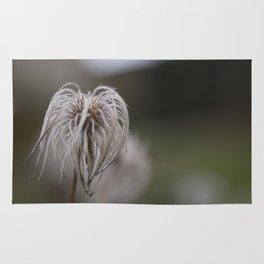 clematis seedhead Rug
