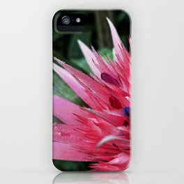 Exotic flower on Isola Bella iPhone Case