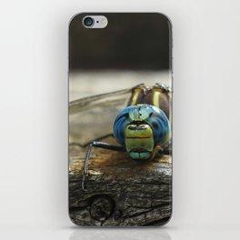 Brachytron pratense -  Hairy Dragonfly. iPhone Skin