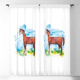 Horse colourfull illustration Blackout Curtain