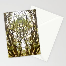 Mirrored Trees 8 Stationery Cards