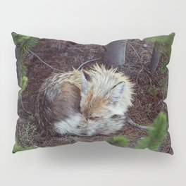 Sleeping Fox Pillow Sham