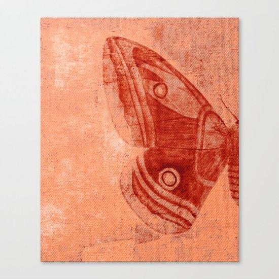 Moths 1 Canvas Print