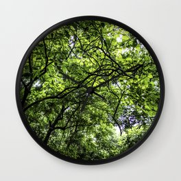 Lush Green Canopy in the Cloud Forest of the Chocoyero-El Brujo Nature Reserve in Nicaragua Wall Clock