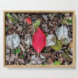 Persimmon tree red leaf Serving Tray
