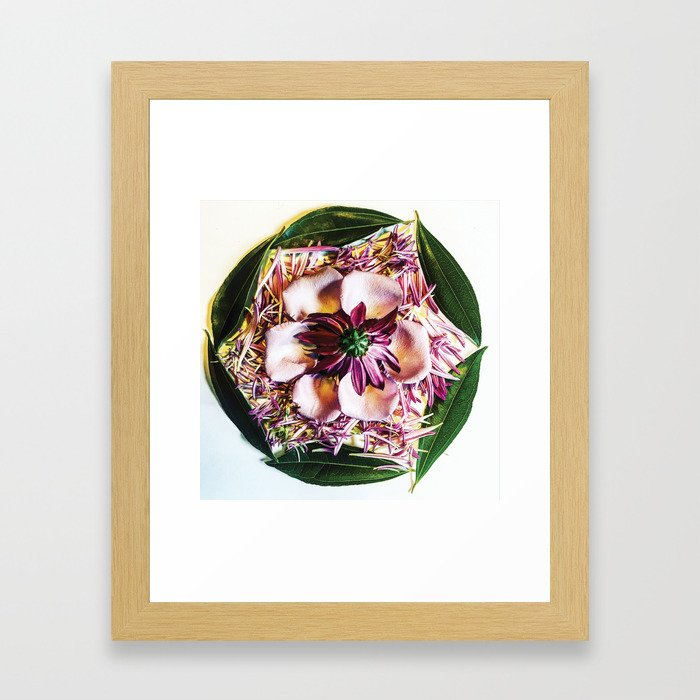 Purple Flower Mandala Framed Art Print