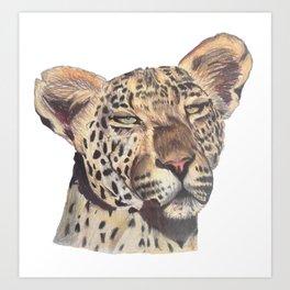leopard dark Art Print