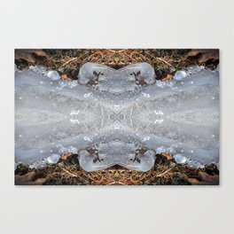Ice Jewels and Pine Needles - Debra Cortese photo art Canvas Print