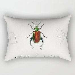 Different types of beetles illustrated by Charles Dessalines D Orbigny (1806-1876) Rectangular Pillow