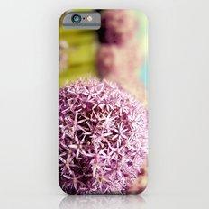 Alliumns iPhone 6s Slim Case