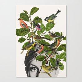 Twiggy Eyes Canvas Print