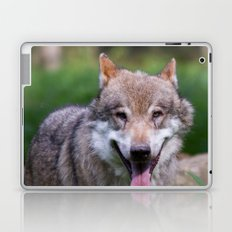 Canis Lupus Lupus III Laptop & iPad Skin