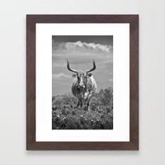 Old Texas Longhorn in Field of Bluebonnets Framed Art Print