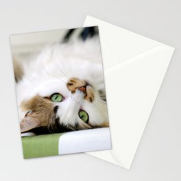 @somecallmefluff Fluff Sunning Her Furs on the Deck Stationery Cards