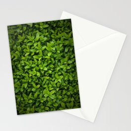 Hedge Stationery Cards