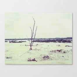 The Mallee Polaroid Canvas Print