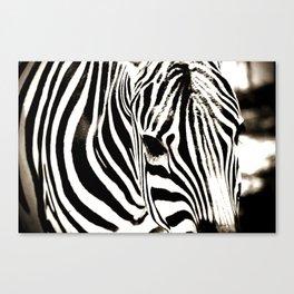 Zebra-Black and White Canvas Print