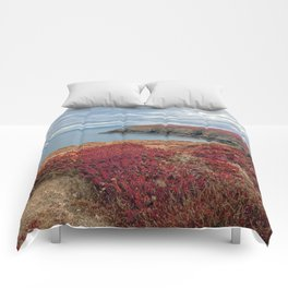 Irish Pomegranate Coast Comforters