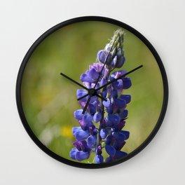 Nootka Lupine Wall Clock