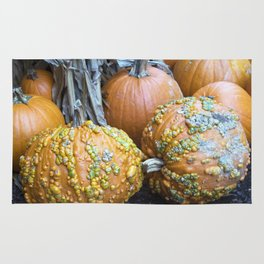 Longwood Gardens Autumn Series 332 Rug