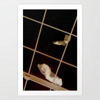 Debris on the Skylight...Liverpool Art Print