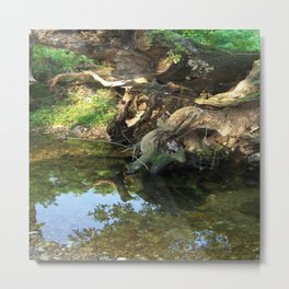 River Tree Metal Print