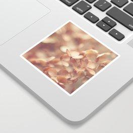 Soft Peach Sticker