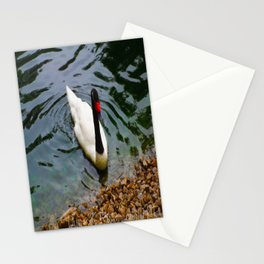 Ashore Matey Stationery Cards