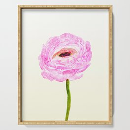 pink cultivited buttercup, Ranunculus Serving Tray