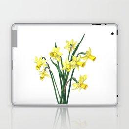 Little Daffodils Botanical Illustration Laptop & iPad Skin