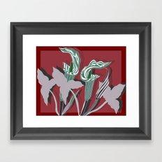Arum Lilies IV. Framed Art Print