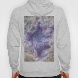 purple agate 0743 Hoody