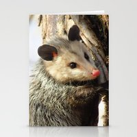 alabama Stationery Cards featuring Alabama Possum by Chuck Buckner