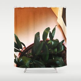 Potted Plant by Window Shower Curtain